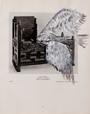 Benoit Delhomme - Birds and old english furnitures - 11