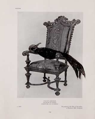 Benoit Delhomme - Birds and old english furnitures - 3